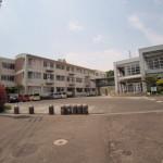 小学校(周辺)